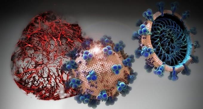 Photo of Casos positivos de coronavirus en el país se elevan a 2620