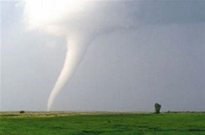 Photo of Al menos 32 muertos por tornados en el sur de EEUU