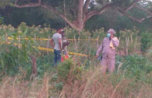 Photo of Hombre muere electrocutado cuando trataba recuperar chichigua