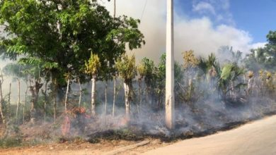 Photo of Incendio afecta una zona ganadera en Higüey