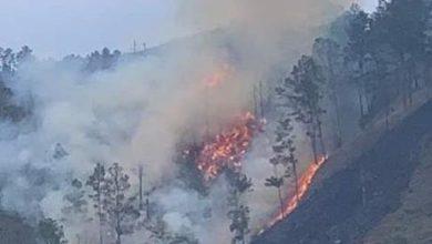 Photo of Se registra otro incendio forestal en Constanza