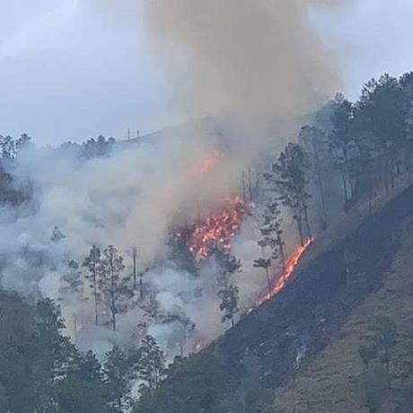 Photo of Se registra otro incendio forestal en Constanza