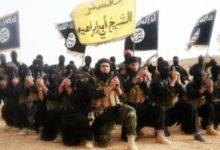 Photo of Estado Islámico pide a Dios «más tortura» por coronavirus para los infieles