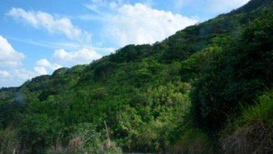 Photo of Medio Ambiente investiga denuncia sobre anomalías en el Diego de Ocampo