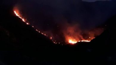 Photo of Se registra incendio forestal en Constanza