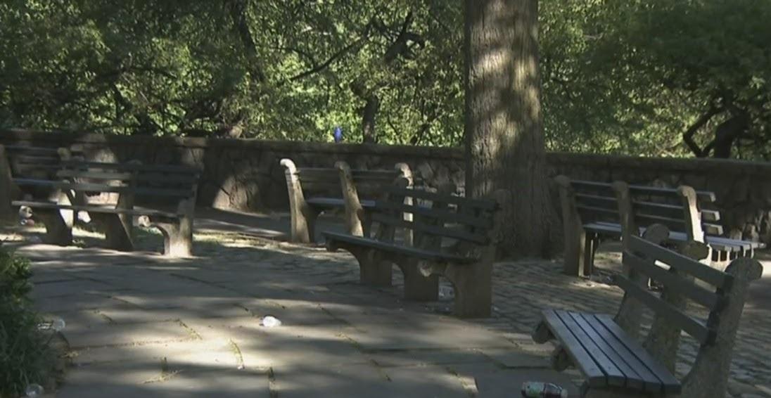 Photo of Una adolescente muerta y 3 heridos deja balacera en parque del Bronx