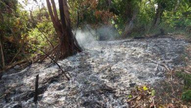 Photo of Desaprensivos provocan incendio en Loma Isabel de Torres en Puerto Plata