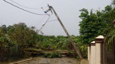 Photo of Lluvias con fuertes vientos derriban postes del tendido eléctrico en la región norte