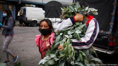 Photo of La OPS alerta de que Latinoamérica y el Caribe podrían registrar más de 400,000 muertos para octubre