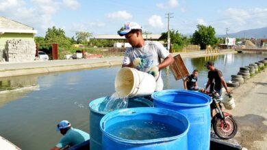 Photo of Escasez de agua golpea a Moca y Santiago