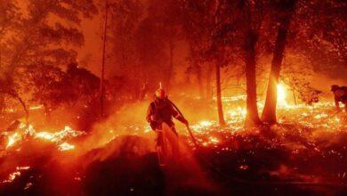 Photo of Los incendios de California dejan ya 12 muertos