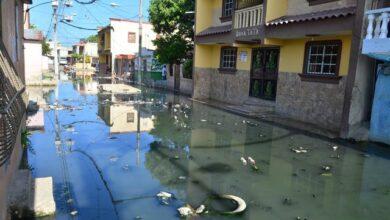 Photo of Tubos obstruidos y mucha basura en los registros desbordan cloaca