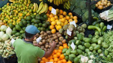 Photo of Los precios mundiales de los alimentos subieron en agosto, por tercer mes consecutivo